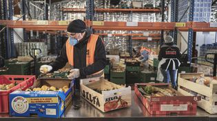 Un bénévole trie des denrées alimentaires après une collecte,le 23 novembre, à Carcassone (Aude). (IDRISS BIGOU-GILLES / HANS LUCAS / AFP)