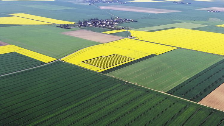 Des hameaux et des fermes dans le Loir-et-cher entourés de champs. Photo d'illustration. (CHRISTIAN WATIER / MAXPPP)