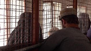L'équipe du 20 Heures a pu se rendre à Kandahar, dans le fief des talibans, mais aussi le cœur de l'Afghanistan. (Capture d'écran France 2)