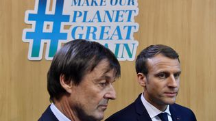 Nicolas Hulot et Emmanuel Macron à Bonn, le 15 novembre 2017. (JOHN MACDOUGALL / AFP)