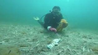 Les fonds marins sont gravement menacés par la pollution.Samedi 18 juillet,à Saint-Jean-Cap-Ferrat (Alpes-Maritimes), une opération nettoyage était organisée. L'occasion de montrer au grand public l'impact des déchets sur la vie marine (FRANCE 3)