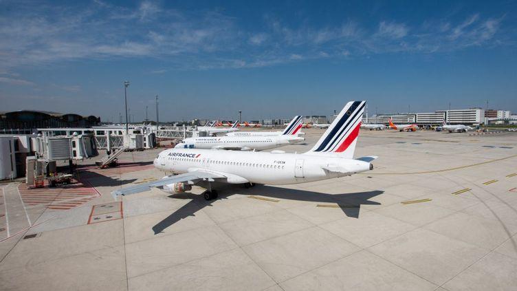 Un avion Air France sur le tarmac de l'aéroport de Roissy-Charles-de-Gaulle, le 28 avril 2021. Photo d'illustration (SANDRINE MARTY / HANS LUCAS / AFP)