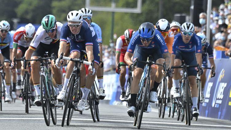 L'Italien Giacomo Nizzolo, à droite de l'écran, s'est imposé devant Arnaud Démare et Pascal Ackermann. (ERIC LALMAND / BELGA MAG)