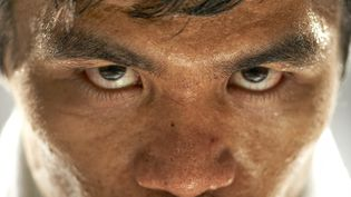 Le boxeur philippin Manny Pacquiao le 17 octobre 2011 à Los Angeles (Etats-Unis). (ROBERT BECK / SPORTS ILLUSTRATED CLASSIC / GETTY IMAGES)