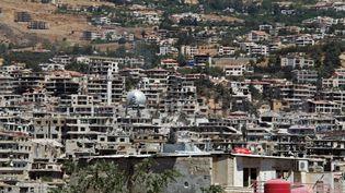 Des bâtiments détruits à Zabadini (Syrie), le 21 août 2015. (MICHAEL ALAEDDIN / RIA NOVOSTI / AFP)