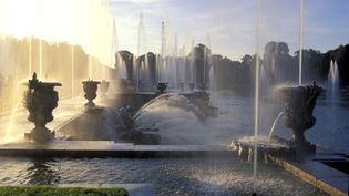 Spectacle des Grandes eaux dans leParc du Château de Versailles dans les Yvelines, Le bassin de Neptune a été créé en 1739 par Lambert-Sigisbert Adam et son frère Nicolas-Sébastien. (ROSINE MAZIN / AURIMAGES VIA AFP)