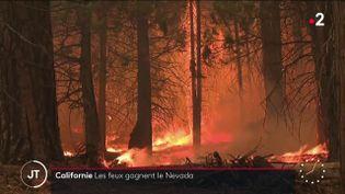 Des feux ravageant la Californie. (France 2)