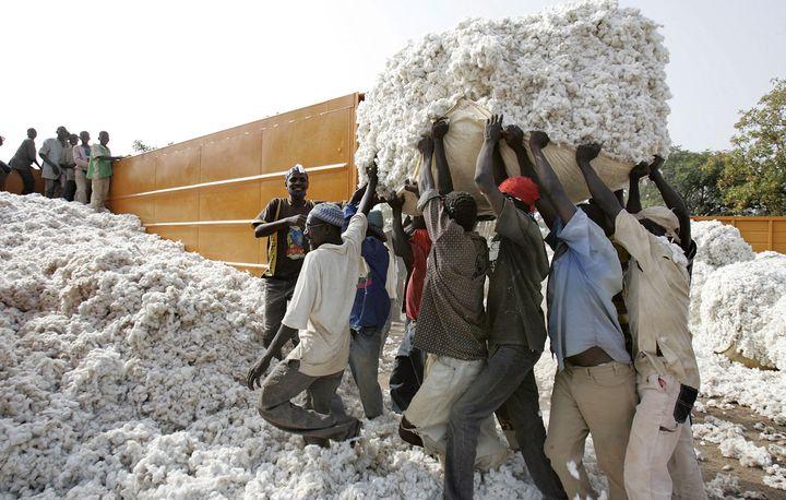 Chargement du coton à Dano au Burkina, autre grand pays producteur de la région avec le Mali. (ISSOUF SANOGO / AFP)