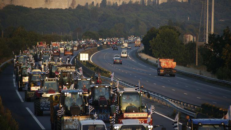 Un convoi de tracteurs sur l'A13 près de Mantes-la-Jolie (Yvelines), le 3 septembre 2015. (KENZO TRIBOUILLARD / AFP)