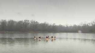 Insolite : les baigneurs alsaciens du grand froid. (Capture d'écran/France 3)