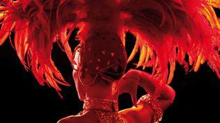 « La plume, entre mode et scène » : coiffe réalisée par la maison Février pour le Moulin Rouge  (Maison Février)