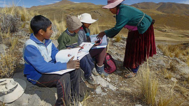 Une mère aide ses enfants au sommet d'une colline, seul endroit des environs où ils peuvent capter sur leur téléphone les classes virtuelles mise en place à cause du Covid-19. (CARLOS MAMANI / AFP)