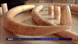 Le commerce d''ivoire va être interdit en Chine. (FRANCE 3)