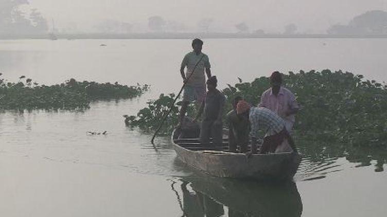 12.000 hectares de marais aux portes de Calcutta. (copie d'écran FTV)
