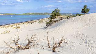 La plage de Teulada, en Sardaigne (Italie). (FRANCESCO BERGAMASCHI / ROBERT HARDING RF / AFP)