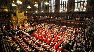 La Chambre des lords, le 8 mai 2013, à Londres (Royaume-Uni). ( AFP )
