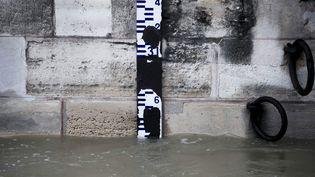 Un repère permet de surveiller la hauteur de la Seine, à Paris, le 25 janvier 2018. (MAXPPP)