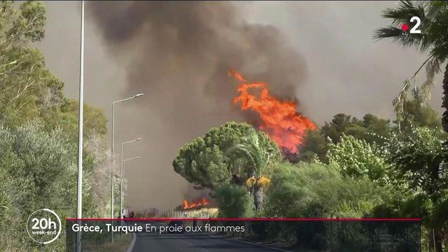 Méditerranée : de violents feux de forêt frappent la Turquie et la Grèce
