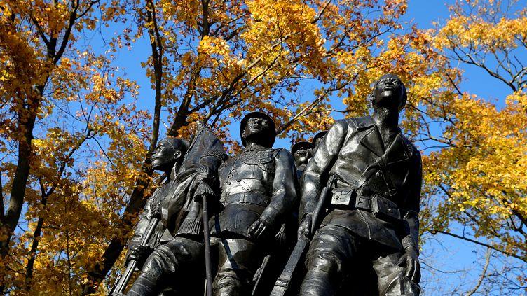 """La statue """"Aux héros de l'armée noire"""" dans un parc de Reims (Marne), le 5 novembre 2018. (FRANCOIS NASCIMBENI / AFP)"""