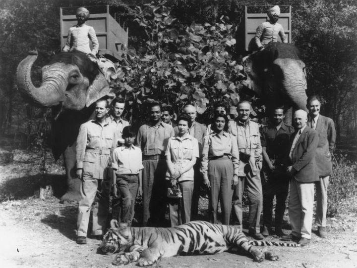 La reine Elizabeth II et le prince Philip prennent la pose derrière un tigre abattupar le duc d'Edimbourg lors d'unepartie de chasse, durant leur tournéeroyale en Inde, le 26 janvier 1961. (GETTY IMAGES)