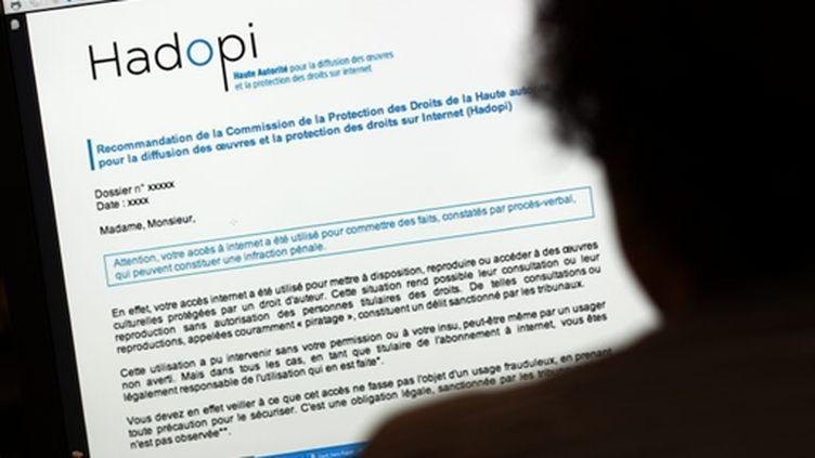 Le site de la Haute autorité pour la diffusion des oeuvres et la protection des droits sur internet (Hadopi) (AFP - THOMAS COEX)