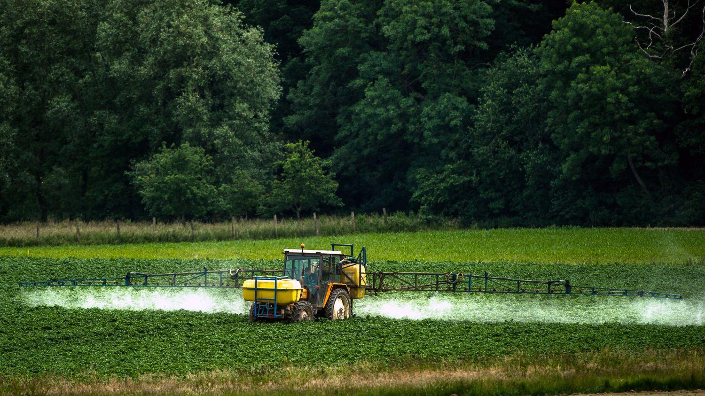 Science : pour la première fois, des chercheurs tourangeaux prouvent le lien entre pesticides et leucémie - Franceinfo