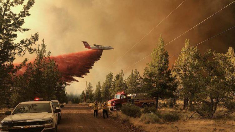 Une image des incendies dans l'Oregon (Etats-Unis); le 11 juillet 2021. (HANDOUT / OREGON DEPARTMENT OF FORESTRY)