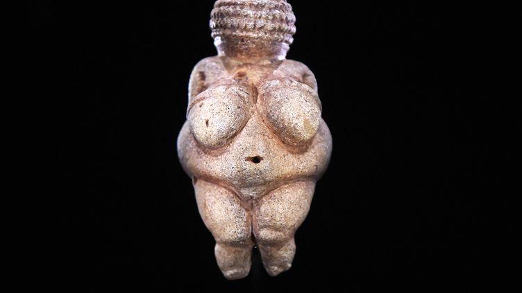 La Vénus de Willendorf, une statuette vieille de plus de 20 000 ans, au Museum d'histoire naturelle de Vienne, en septembre 2015. (HELMUT FOHRINGER / APA-PICTUREDESK)