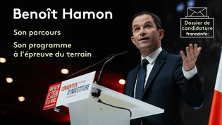 Benoît Hamon lors de la convention d'investiture du Parti socialiste, le 5 février 2017 à Paris (THOMAS SAMSON / AFP)