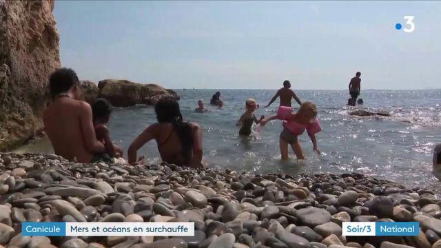 Canicule : mers et océans en surchauffe
