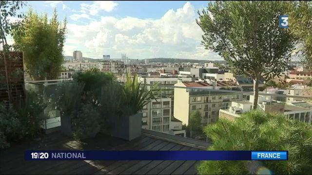 Logement : vivre sur les toits