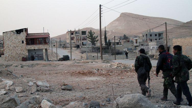 A Sahel, localité proche deYabroud, le 3 mars 2014. Les troupes loyalistes ont repris le contrôle de Yabroud, le 16 mars 2014. (BASSEM TELLAWI / XINHUA / AFP)