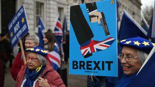 Manifestation anti-Brexit à Londres (Royaume-uni), le 8 janvier 2020. (DANIEL LEAL-OLIVAS / AFP)