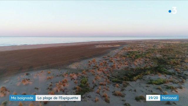 Ma baignade : la plage de l'Espiguette