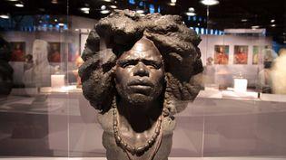Exposition « Cheveux chéris » au musée du quai Branly (Paris 7e). Du 18 septembre 2012 au 14 juillet 2013. Ouvert tous les jours, sauf le lundi. (ELODIE DROUARD / FTVI)
