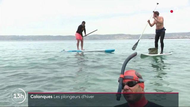 Marseille : dans les calanques, des passionnés s'adonnent à la plongée en plein mois de février