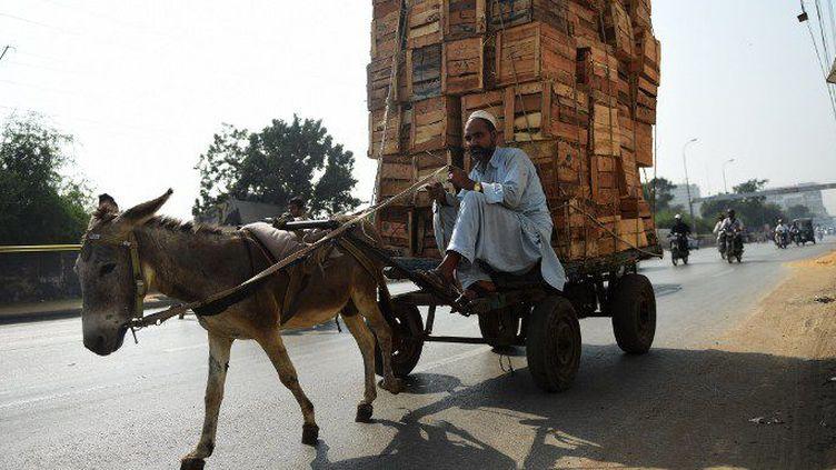 Un livreur de cageots dans les rues de Karachi, le 16 novembre 2016. (Rizwan TABASSUM / AFP)