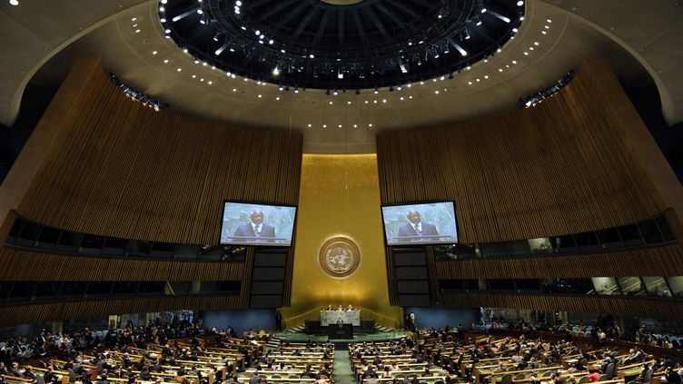 L'Assemblée générale de l'ONU, à New York, lors d'un discours de Kofi Annan sur la situation en Syrie, le 7 juin 2012. (TIMOTHY A. CLARY / AFP)