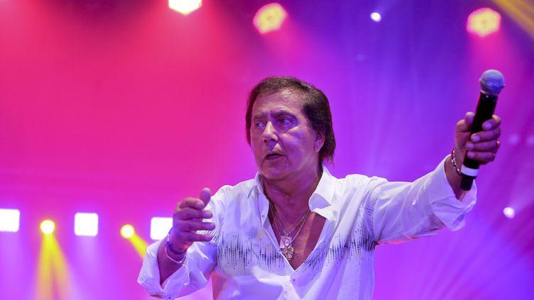 Franck Michael en concert à la Kermesse de la bière de Maubeuge, le 20 juillet 2017. (MAXPPP)