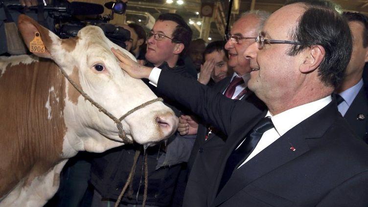 Le président de la République, François Hollande, au Salon de l'agriculture le 23 février 2013. (PHILIPPE WOJAZER / AFP)