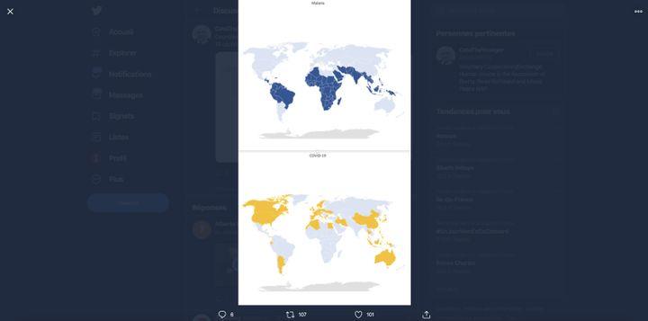 Capture d'écran d'un tweet présentant deux cartes opposants les pays touchés par le coronavirus et la malaria. (CAPTURE ECRAN)
