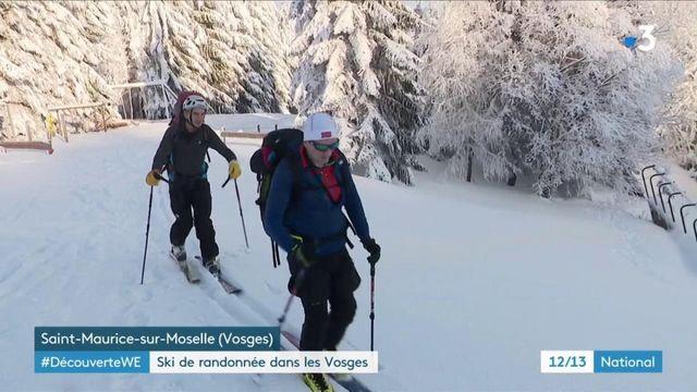 Vosges : de futurs moniteurs de ski de fond s'entraînent
