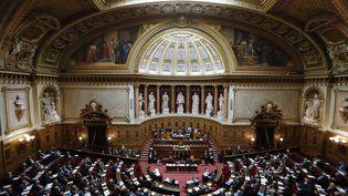 Les sénateurs sont réunis dans l'hémicycle de la Haute Assemblée, à Paris, le 28 octobre 2014. (FRANCOIS GUILLOT / AFP)