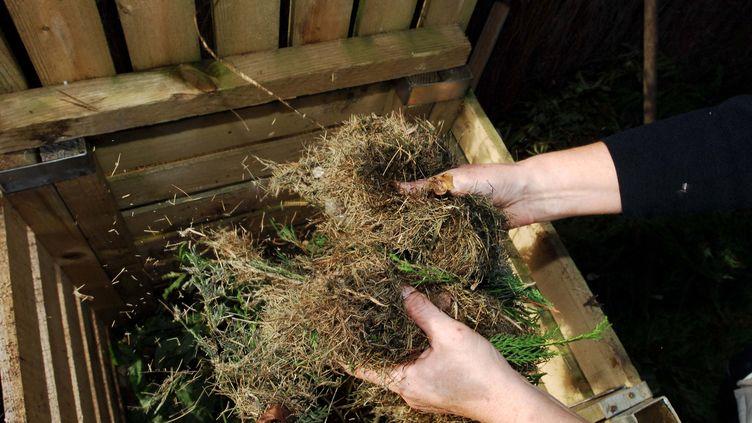 Des déchets verts pour le compostage. Photo d'illustration. (CLAUDE PRIGENT / MAXPPP)