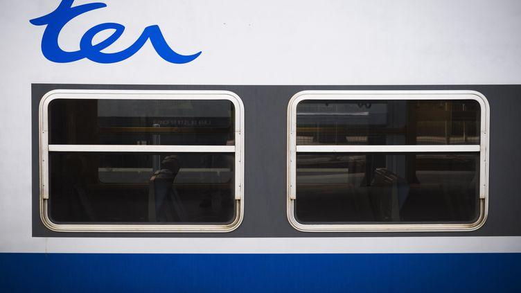 Logo du TER (Transport express régional) de la SNCF, le 24 février 2018. (JOEL SAGET / AFP)