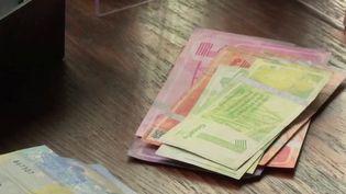 Lyon : la monnaie locale, la Gonette, attire un géant du CAC 40 (France 3)