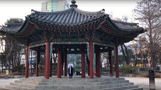 Un membre du groupe Free Joseon lit une déclaration de gouvernement provisoire. (CAPTURE D'ÉCRAN YOUTUBE)