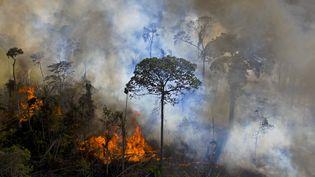 Des parties de la forêt amazonienne sont intentionnellement brûléesàNovo Progresso (Brésil), le 15 août 2020. (CARL DE SOUZA / AFP)
