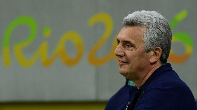 Le sélectionneur de l'équipe de France, Claude Onesta (FRANCK FIFE / AFP)