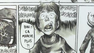 Dans la catégorie 12/16 ans, le jeune Nelson Techer a bluffé les visiteurs de l'exposition. (France 3 Bretagne / T. Bouilly)